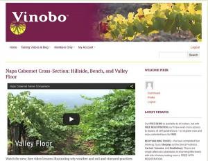 vinobo wine web site